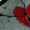 Tangga - Cinta Begini #Piano Instrumental (Cover)