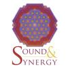 Tibetan Singing Bowl Chakra Meditation