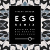ESG Remix (Feat. Meridian Dan, Big Narstie & Scrufizzer) mp3