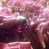 Even Flow Remix Ft. DJ Mustard & Eddie Vedder