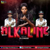 Alkaline Mixtape 2014  Mixed By Dj Chigga  UnCut