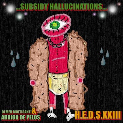 Demer Moltisanti & Abrigo de Pelos - Subsidy Hallucinations - [Muero]