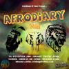 Download DJ Tana - #AfroDiaryVol2 Afrobeats CD Mp3