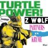 TURTLE POWER (Z Wolf Mix)