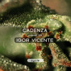 Cadenza Podcast | 128 - Igor Vicente (Cycle)