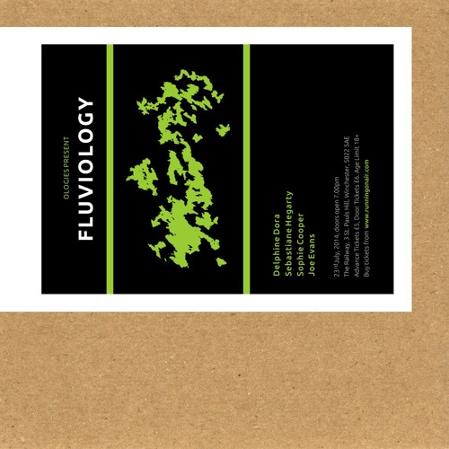 Fluviology Gig - The Railway - Winchester (UK) - 23-7-14 - Companion CD