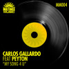 My Song 4 U (Carlos Gallardo & Peyton) mp3