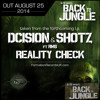 16. Dcision & Shotz feat. RMS - Reality Check (clip) // Back to Jungle L.P. by Formation Records