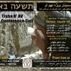 Tisha B'Av Conference Event 2014