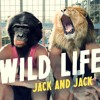 Wild Life - Jack and Jack