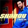 DJ CALM ME - SHAGGY - IT WASNT ME (2K14) ! ! !