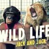 Wild Life (Jack J. And Jack G.)