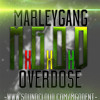 Whippin X Flippin By Marley Gang Mp3