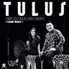 Tulus - Teman Hidup Walau Hanya Sewindu ( DJ Samr Remix ).mp3