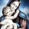 افرحى يا مريم .. ابونا موسى رشدى