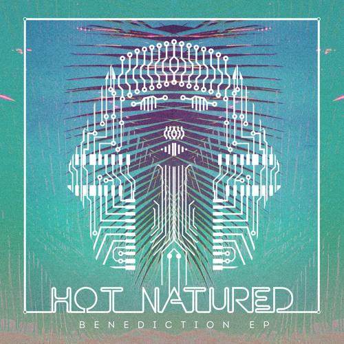 Hot Natured - Benediction (Nic Fanciulli Remix)