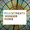 Adventure Club Ft. The Kite String Tangle - Wonder (PeaceTreaty Remix)**Free Download**