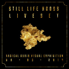 Still Life Hoods - Liveset (8 3 14, Radical Audio Visual Exhibition)