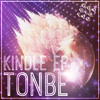 HOTDIGITS003 Tonbe - Are You Ready To Get Down? (Snippet) Tonbe