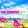 DJ Babu Presents The Groove Vol.5 #2014 Summer House Sessions