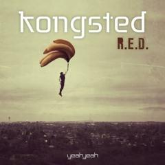 Kongsted - R.E.D (Dittmann's -PUMP UP- Mash Tool)
