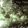 Can You Tell (Ra Ra Riot Cover)
