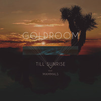 Goldroom Till Sunrise Artwork