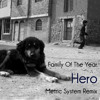 Family Of The Year - Hero (Metric System Remix)