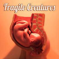 Fragile Creatures EP