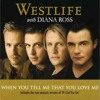 westlife ft. Diana ross - when you tell me that you love me (cover by @sahrup dan faizal)