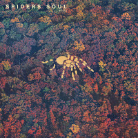Boats Spider's Soul Artwork