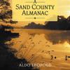 Sand County Almanac excerpt