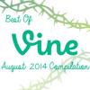VAPORDOG & SCHWARZ-BEST OF VINE AUGUST 2014 COMPILATION