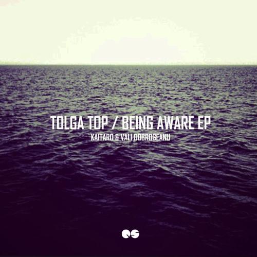Tolga Top - Heat (Vali Dobrogeanu Remix)