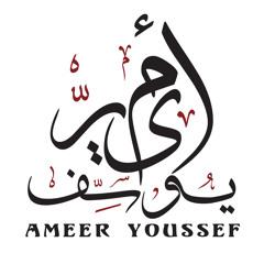 Ameer Youssef :: انسان سابق