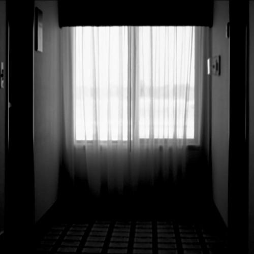 Rhizome - S W Curtains