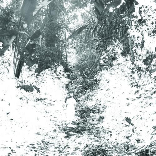 Soundscape 98 /The Congo River