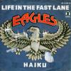 The Eagles - Life In The Fast Lane (Haiku Funkplus Remix)