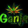 Orgi69 Feat Serk - Smoke Weed