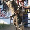 Soy de Rancho y Escucho Corridos de Jaripeo