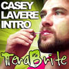 Casey Lavere Intro Theme Song (Videos Love Outgoing Guys) - TeraBrite