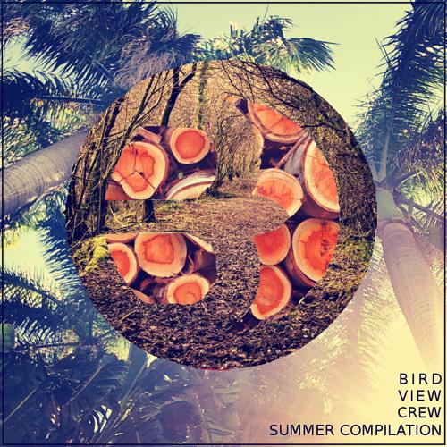 Glass Wings [BirdviewCrew Summer Compilation]