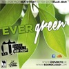Ü3 PUNKT 0 - Evergreen