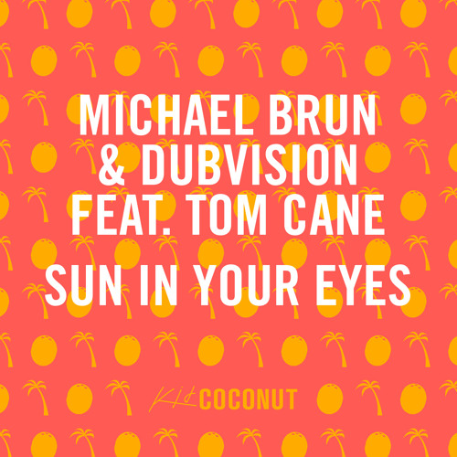 Michael Brun & DubVision ft. Tom Cane - Sun In Your Eyes (Preview)