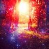 Vini Vici - Music Evolution Vol. 2 - Promo set- Tree of Life Festival!
