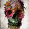 Podcast #002  DNA Groove Topologies Radioshow (Promo mix)