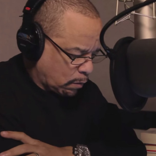 Clip 3 - Ice T voices a moon elf woman
