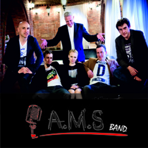 Grease- You're the one that I want (Cover-AMS band)