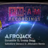 Afrojack  Feat. Snoop Dogg - Dynamite(Salvatore Ganacci & Jillionaire Remix)