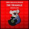 Chris Bullen & Dingaz - The Triangle (Original Mix) *Out Now*